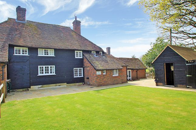Thumbnail Detached house to rent in Ellens Green, Rudgwick, Horsham