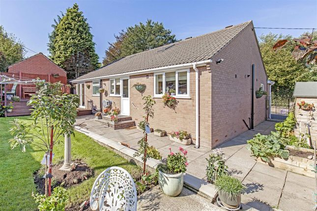 Thumbnail Detached bungalow for sale in Highstairs Lane, Stretton, Alfreton
