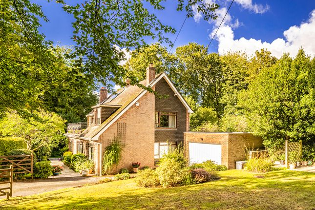 Thumbnail Detached house for sale in High Trees, Upper Basildon