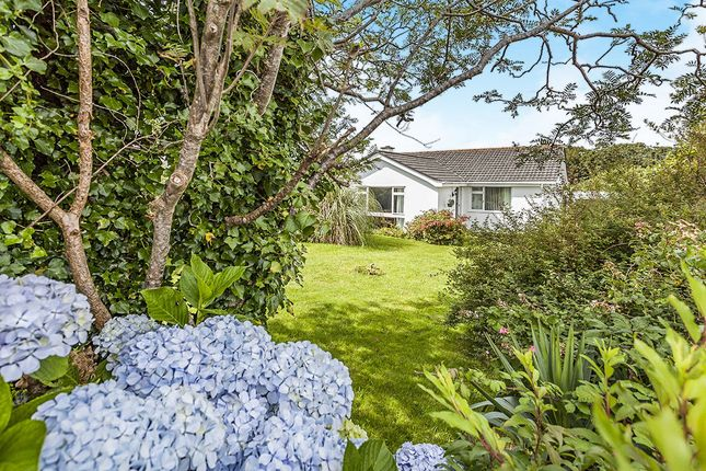 Thumbnail Bungalow for sale in Roseland Park, Camborne