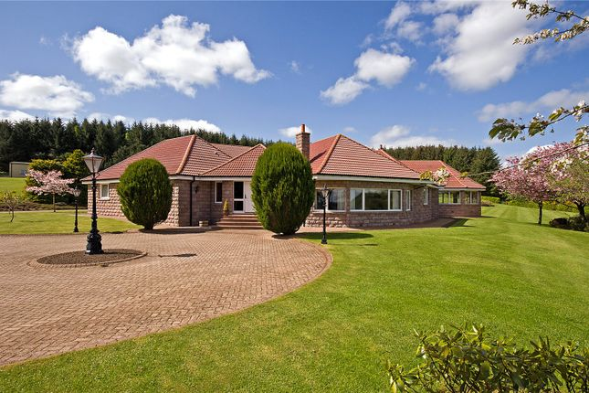 Thumbnail Bungalow for sale in Brae Lodge, Ordhead, Inverurie, Aberdeenshire