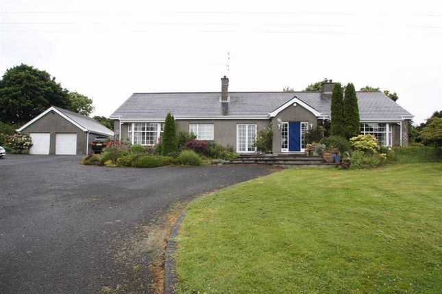 Thumbnail Detached bungalow to rent in Dunmore Road, Ballynahinch