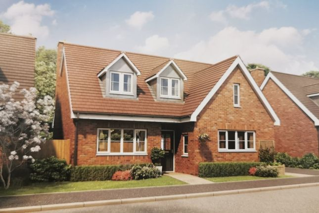 Thumbnail Detached house for sale in Joye Close, Blunham