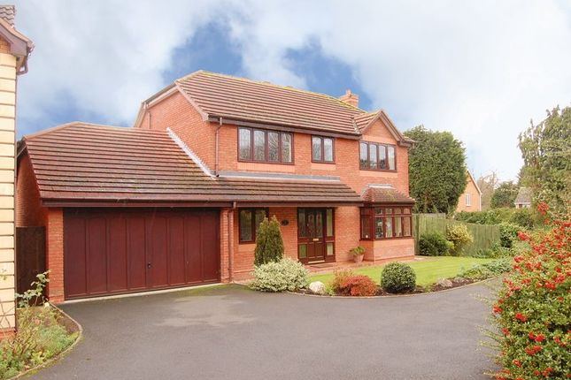 Thumbnail Detached house to rent in Farway Gardens, Codsall, Wolverhampton
