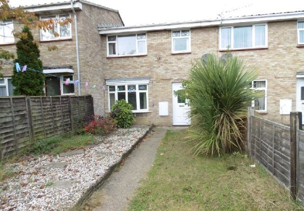 Thumbnail Terraced house to rent in Calamint Road, Witham