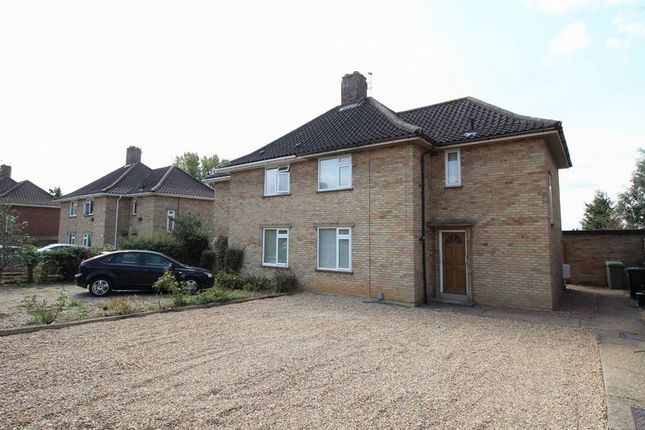 Thumbnail Semi-detached house to rent in Pettus Road, Norwich