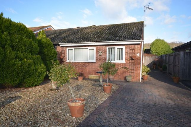 Thumbnail 2 bed bungalow to rent in Evergreen Close, Exmouth