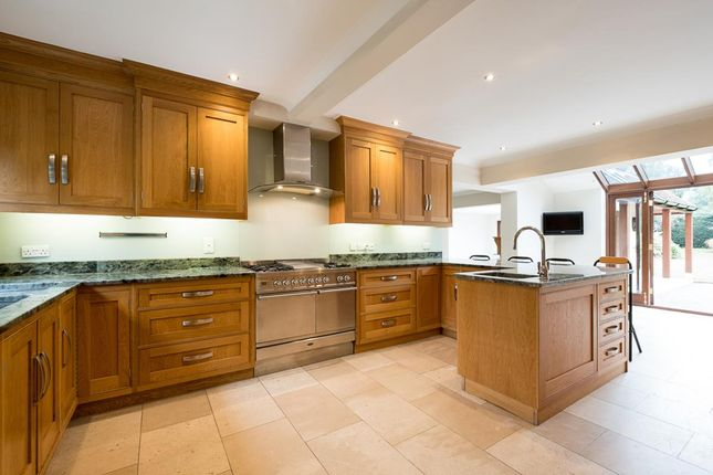 Thumbnail Detached house to rent in Harebell Hill, Cobham