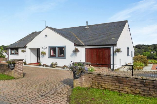 Thumbnail Bungalow for sale in Lyne Valley View, Roweltown, Carlisle