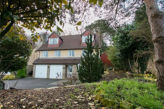 Thumbnail Detached house for sale in High Street, Banwell, Somerset
