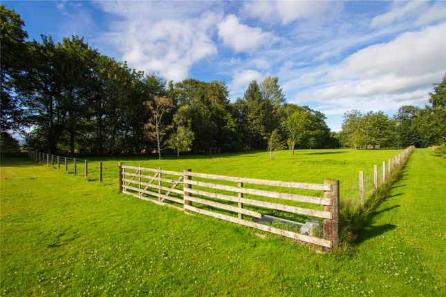 Paddocks of Gallery, By Montrose, Angus DD10