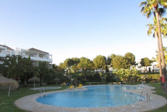 Img_7464 of Spain, Málaga, Mijas, Riviera Del Sol