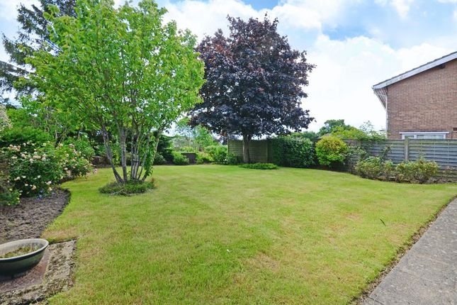 Garden of Knowle Croft, Ecclesall, Sheffield S11