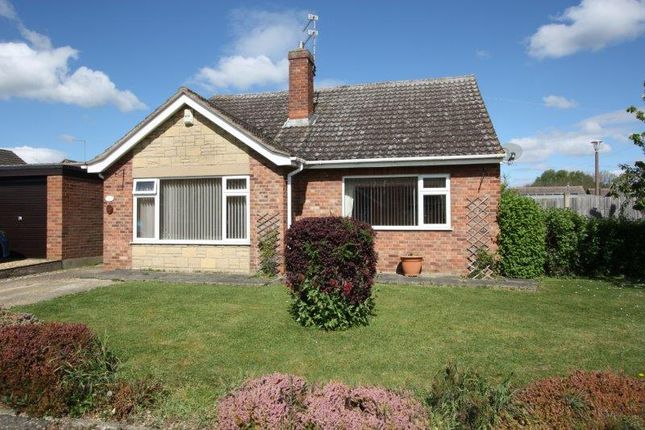 Thumbnail Detached bungalow for sale in Aubretia Avenue, Werrington