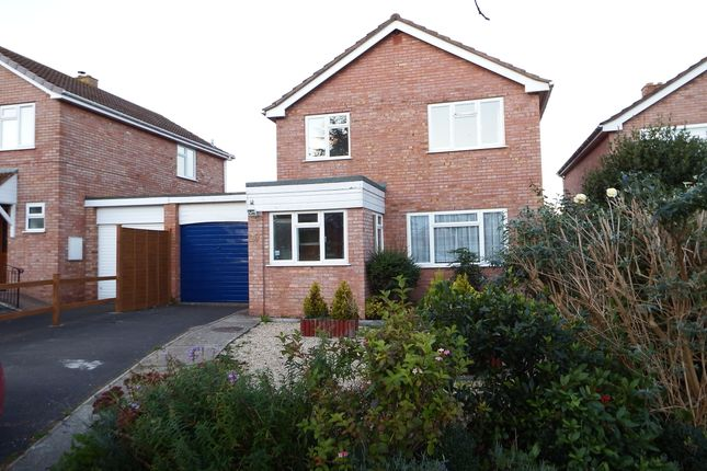 Thumbnail Detached house to rent in Huntham Close, Stoke St Gregory