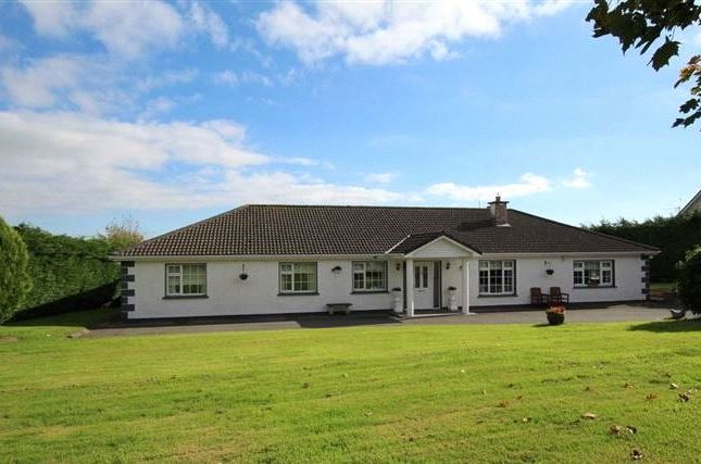 Thumbnail Bungalow for sale in County Tipperary, Ireland