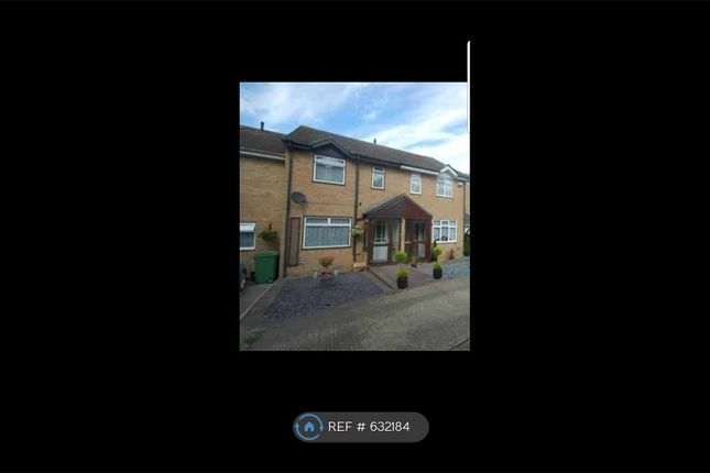 Thumbnail Terraced house to rent in Spenlow Drive, Kent