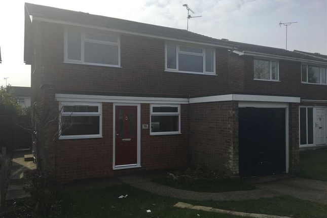 Thumbnail Detached house to rent in Queensland Drive, Colchester