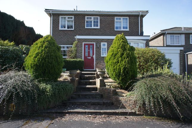 Thumbnail Detached house for sale in Yew Tree Close, Oakley, Basingstoke