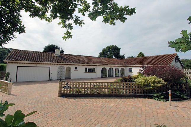 Thumbnail Bungalow for sale in Barton Common Lane, Barton On Sea, New Milton