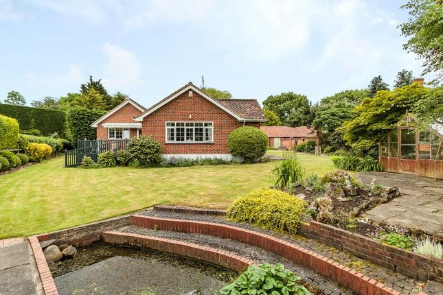 Thumbnail Detached bungalow for sale in New Road, Ingatestone