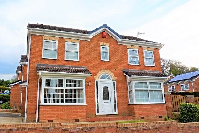 Thumbnail Detached house for sale in Blenheim Close, Sheffield