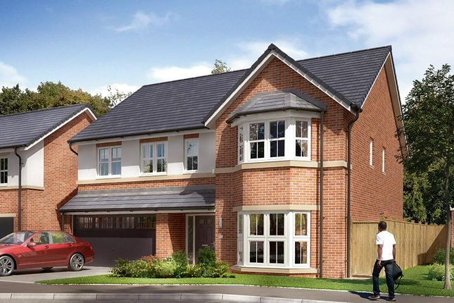 "Thumbnail Detached house for sale in ""The Kirkham "" at Markle Grove, East Rainton, Houghton Le Spring"