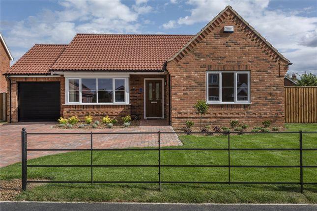 Thumbnail Detached bungalow for sale in Plot 10 All Saints Close, Little Melton, Norwich, Norfolk