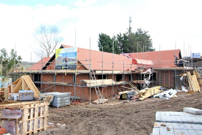 Thumbnail Detached bungalow for sale in New Ground Road, Aldbury, Tring
