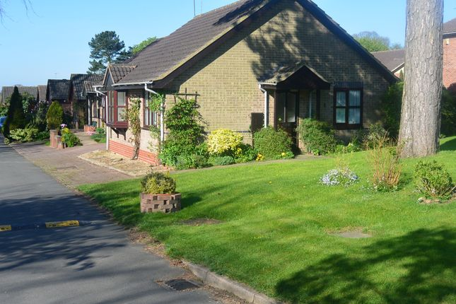 Thumbnail Detached bungalow to rent in Spinney Drive, Botcheston