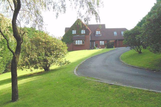 Thumbnail Detached house for sale in Tudor Court, Llanedi, Pontarddulais, Swansea