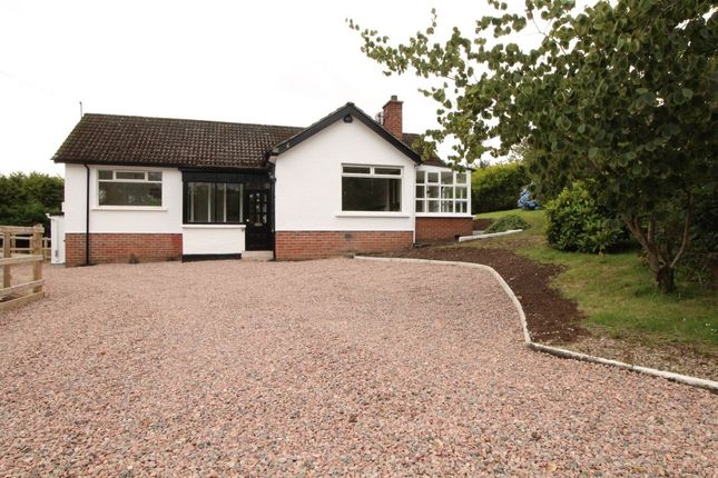 Thumbnail Bungalow for sale in Belfast Road, Dundonald, Belfast