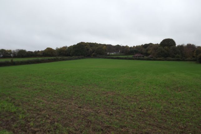 Thumbnail Land for sale in King's Bank Lane, Beckley, Nr, Rye