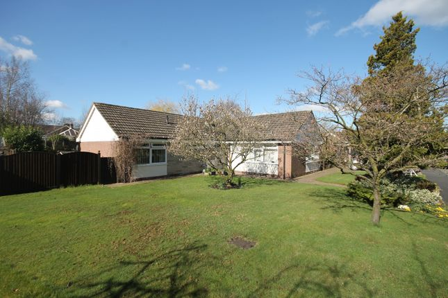 Thumbnail Bungalow for sale in Birch Grove, Knutsford
