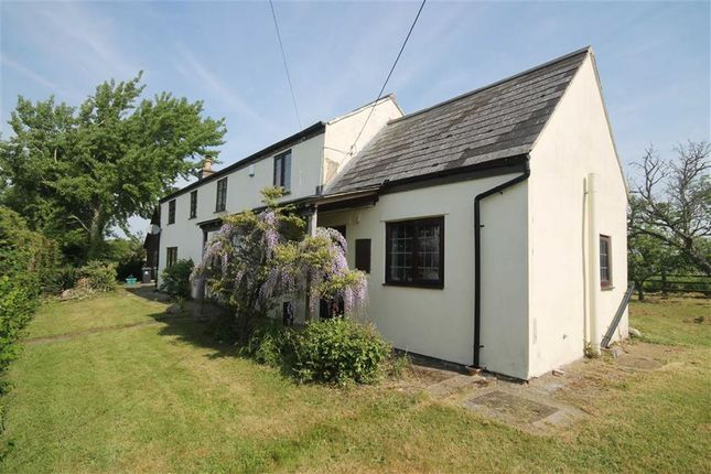 Thumbnail Cottage for sale in Rodley, Westbury-On-Severn, Gloucestershire
