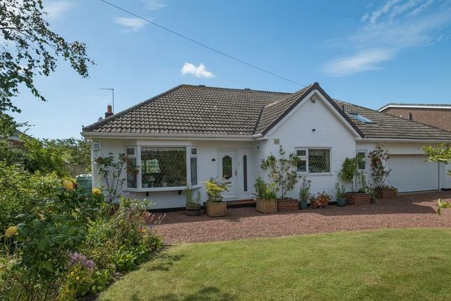 Thumbnail Detached bungalow for sale in Avondale Road, Darras Hall, Ponteland
