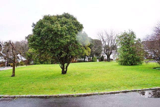 Communal Green of Oldenburg Park, Paignton TQ3