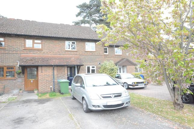 Thumbnail Terraced house to rent in Coombe Pine, Bracknell