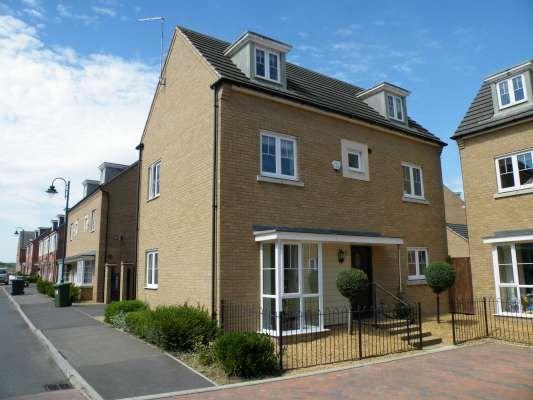 Thumbnail Detached house to rent in Freshwater Road, Hampton, Peterborough