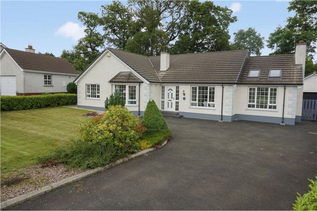 Thumbnail Detached house for sale in Drumnamallaght Road, Ballymoney