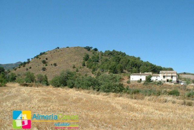 Foto 5 of Vélez-Rubio, Almería, Spain