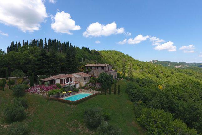 Montone A Piedi, Montone, Aerial View 1