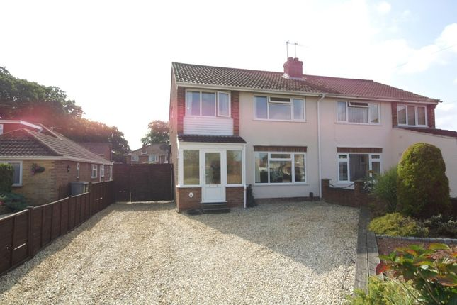 Thumbnail Semi-detached house for sale in Laurel Road, Thorpe St Andrew, Norwich