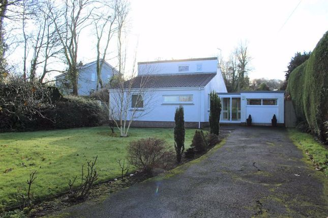 3 bed detached bungalow for sale in Grove Hill, Pembroke SA71