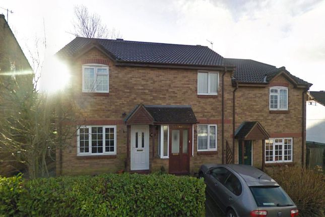 Thumbnail Semi-detached house to rent in Tweed Close, Honiton