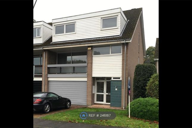 Thumbnail End terrace house to rent in Cedar Drive, Sunningdale