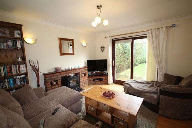 Thumbnail Property to rent in Glanceulan, Penrhyncoch, Aberystwyth