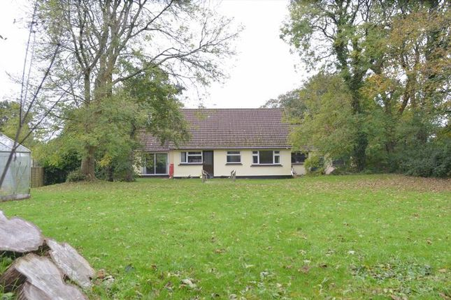 Thumbnail Detached bungalow for sale in Barripper, Camborne