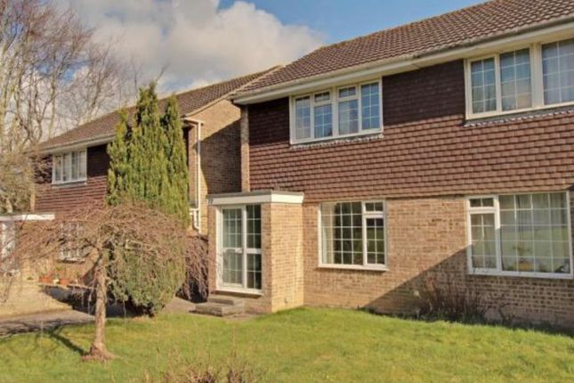 Thumbnail Semi-detached house to rent in Lime Tree Avenue, Yeovil