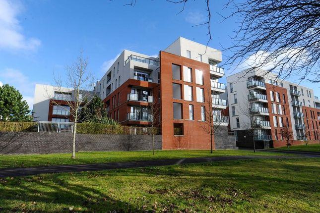Thumbnail Flat for sale in Annadale Crescent, Belfast